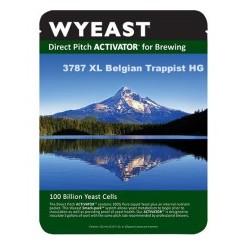 Wyeast 3787 Trappist High Gravity
