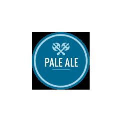 Einstök Arctic Pale Ale, 33 cl