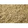 Carapils, Weyermann, ebc 2,5 - 6,5, pris pr. 100 g.
