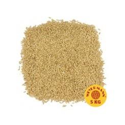 Røg Malt, Weyermann, ebc 4 - 8 Beech smoked, pris pr. 100 g.
