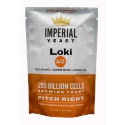 A43 Loki ( Kveik ) økologisk vådgær