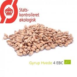 Gyrup Hvede Malt økologisk, Gyrup Gårdmalt, ebc 4, pris pr. 100 g.