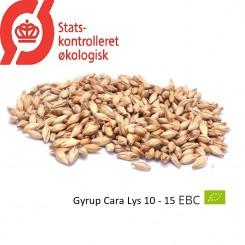 Gyrup Cara Lys Malt økologisk, ebc 10 - 15, pris pr. 100 g.